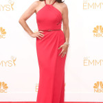 Julia Louis Dreyfus Emmy Awards Fashion 2014