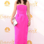 Zooey Deschanel Emmy Awards Fashion 2014