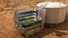 NASA Vegetables in Space