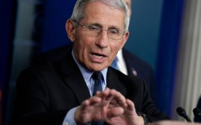 Dr. Fauci Director of NIH NIAID